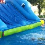 mini_parque_acuatico_delfin