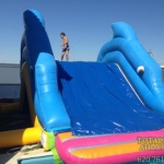 mini_parque_acuatico_delfin2