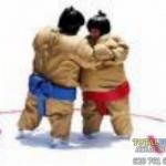 castillo_hinchable_lucha_de_sumo