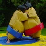 castillo_hinchable_lucha_de_sumo2